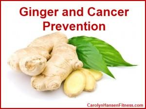 Ginger-2